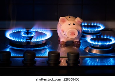 The cost of natural gas is more expensive.