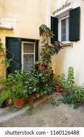 Cosy street corner in the old town Corfu. Multiple plans in tubs and windows with shutters on the pale yellow walls