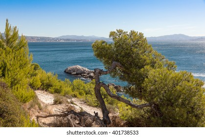 Cote d`azur, Bay of Marseille, Provence, France