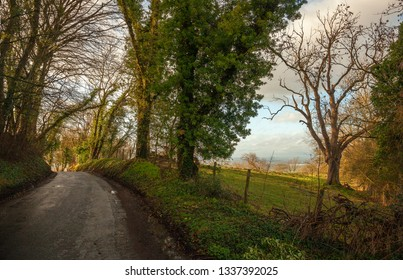 Cotswold lane to Willersey, Gloucestershire, England
