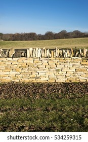 Cotswold stone fence