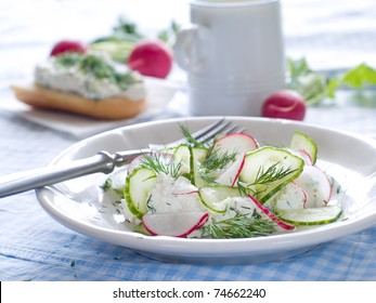 Cottage cheese with fresh cucumber and radish for healthy breakfast