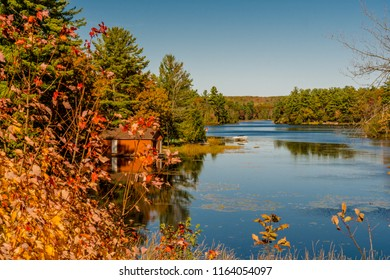 Cottage Country Fall Scene featuring lake with red cabana, trees showing fall colors on a bright sunny day with blue sky
