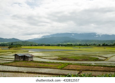 Cottage Terrace rice fields in Mae Chaem District Chiang Mai, Thailand