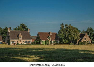 Cottages and trees in front of cultivated fields at the late afternoon light, next the village of Damme. A quiet and charming countryside old village near Bruges. Northwestern Belgium.