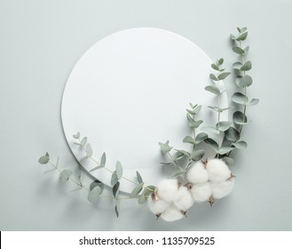 Cotton flowers and eucalyptus branches on paper background