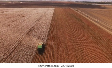Cotton picking - Combine - Cotton harvester - picking cotton in the field aerial shot