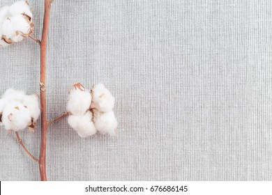 Cotton plant flower branch on grey fabric surface. Textile background with border