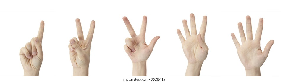Counting Hands from one to five on a white background