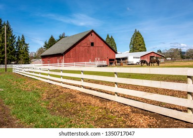 Country barn and horses in rural Oregon state.