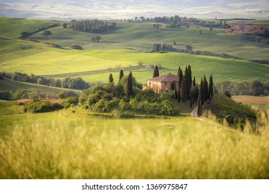 Country farm among grass hills in Tuscany, rural landscape. Countryside farm, cypresses trees, green field,Italy, Europe.