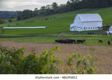Country Farm in Wisconsin