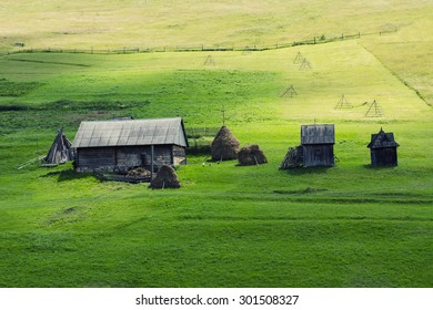 country house in the green field
