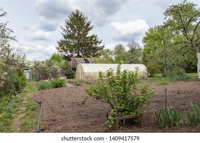 Country house, greenhouse with cultivated land surrounded by greenery in the spring in Russia. Russian dacha.