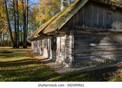 country house with oak trees in yellow autumn