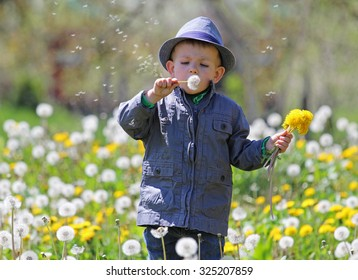 Country kid blowing a dandelion