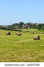 Country landscape in Aveyron, near Saint-Sernin-sur-Rance, France) at summer