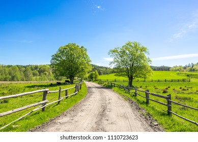 Country landscape, farm field with grass, pasture in countryside scenery with rural road