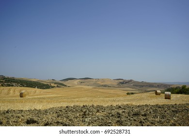 Country landscape with hay bales