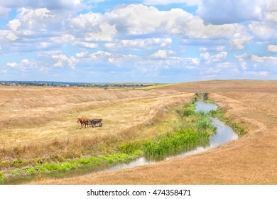 country landscape with river and field