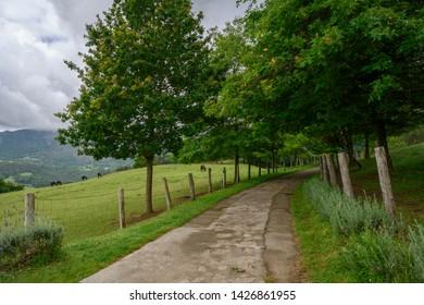 A country lane in El Allende, Asturias, Spain.