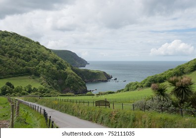 Country Lane Leading Down to Lee Bay on the South West Coast Path between Lynton and Combe Martin with the Bristol Channel in the Background in Rural Devon, England, UK