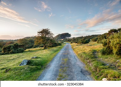 A country lane running through Bodmin Moor in Cornwall