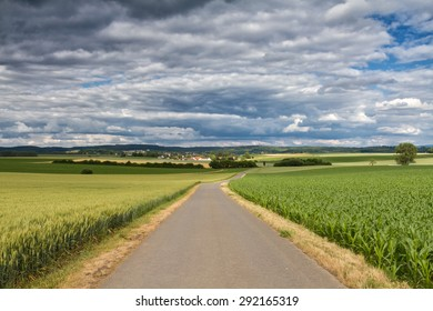 Country lane surrounded by corn and barley fields, Wetterau, Hessen, Germany