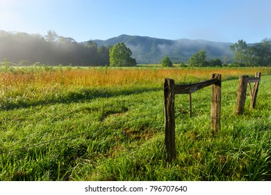 Country Meadow on Sunny Morning in Smoky Mountains