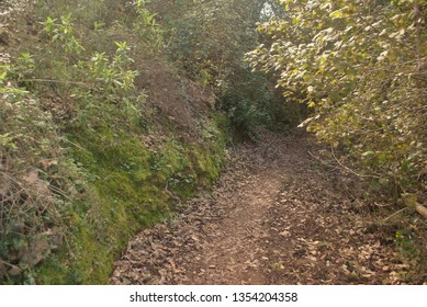 A country path that leads across the foot of a valley near Polis on Cyprus.