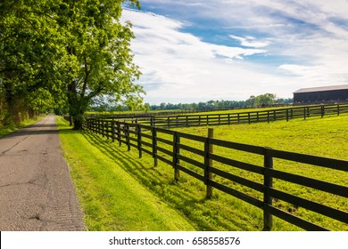 Country road along the horse farms.