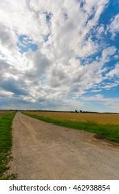 Country road among green and yellow fields. Nature landscape. Big massive clouds.