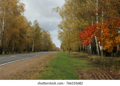 country road in autumn. trees along the road. trees with yellow and red leaves along the road. a deserted country road