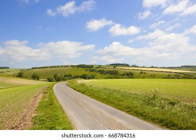 a country road beside pea field on chalky soil with meadows and hedgerows under a blue summer sky in the yorkshire wolds