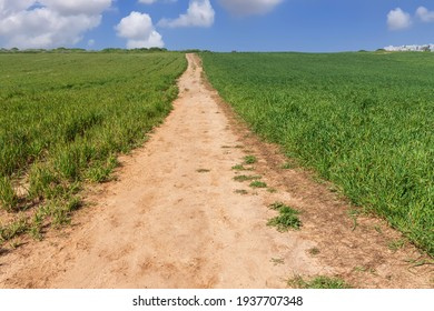 Country road between agricultural field against ky with clouds - Shutterstock ID 1937707348