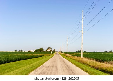 Country road between dark green fields of soybeans on mostly flat farmland a sunny morning in August, central Illinois, USA, for agricultural, travel, and heartland motifs