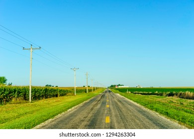 Country road between fields of corn (maize) and soybeans on a sunny morning in August, central Illinois, USA, for agricultural, travel, and heartland motifs