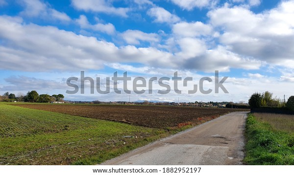 Country road between fields during winter