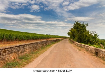 Country road between old vineyards in Burgundy, France with beautiful cloudy sky