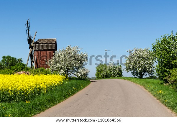 Country road by an old windmill in a colorful spring season landscape at the swedish island Oland