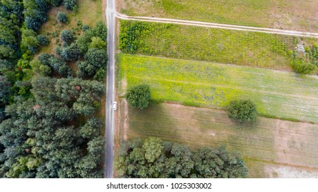 Country road, car and trees top aerial view for drone