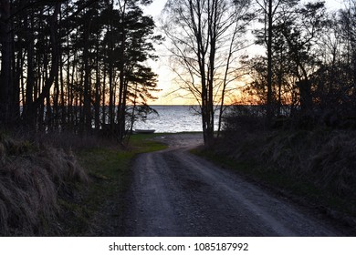 Country road to the coast by a beautiful sunset at the swedish island Oland