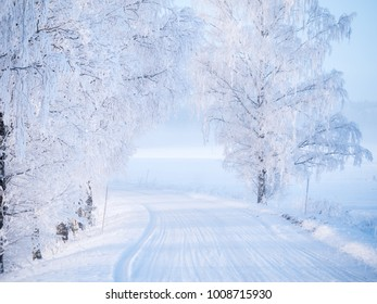Country road in a Cold Winter landscape with snow and frost