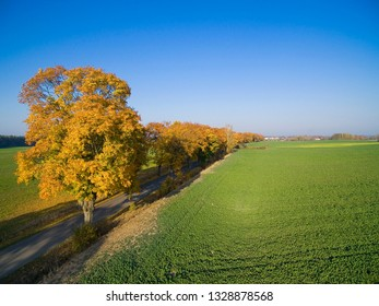 Country road with colorful maple trees through the hilly terrain during the autumn season, Pozezdrze town in the background, Mazury, Poland