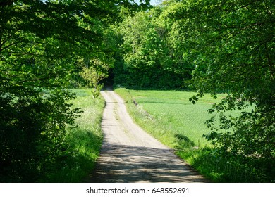 Country road in Denmark, May 2017