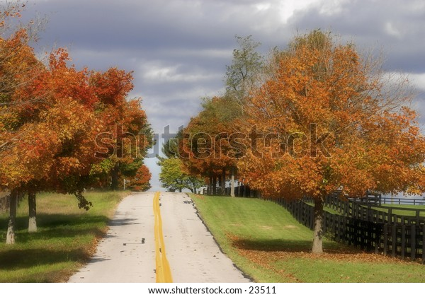 Country road in the fall.