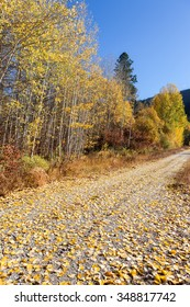 Country Road Fall Colors
