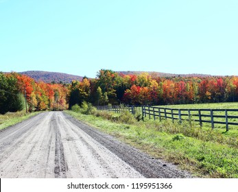 Country Road in Fall in Eastern Townships, Quebec