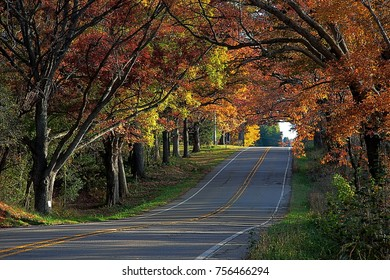 Country road in fall. Milford Rd., Highland Michigan