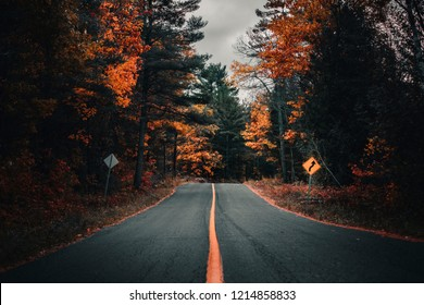 COUNTRY ROAD IN FALL/AUTUMN - Moody scene of highway road cutting through forest landscape. Orange and green fall colors. Adventure through Canadian landscape. Ontario, Canada.